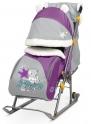 Детские санки-коляска Ника Детям 6